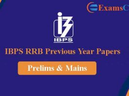 IBPS RRB Clerk Previous Year Question Papers
